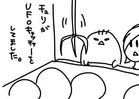 tumblr_inline_nhat92hYVa1se5hq0.jpg