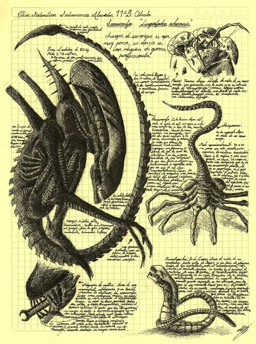 "aliensandpredators:  yautjalife:  ""Alien Life Cycle, Da Vinci Style""Art by Elkin Salamanca  awesome"