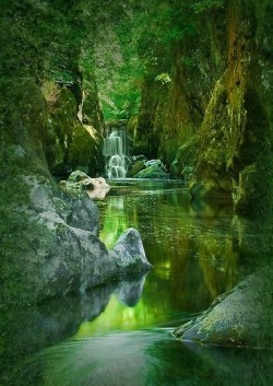 tremblingcolors:  The Fairy Glen, Conwy River near Betws-y-Coed, North Wales