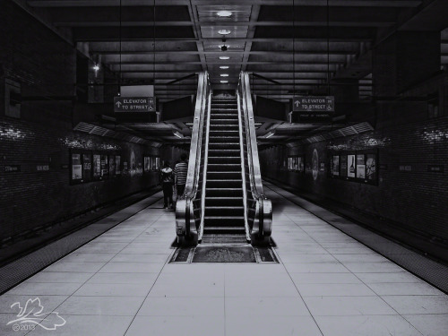 trappedleaf:  Van Ness BART Station, San Francisco