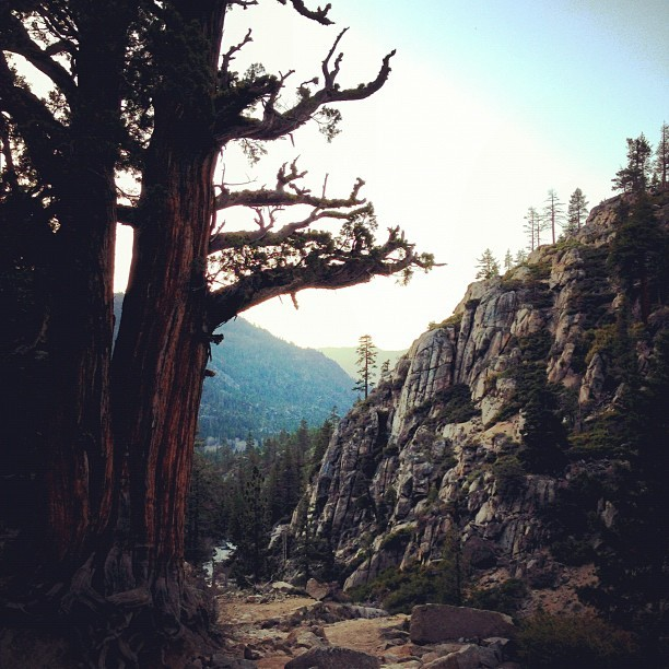 wanderthisearth:  Bliss in the Sierras.
