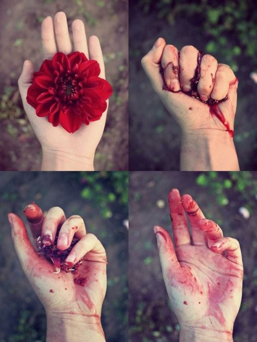 "asfa-riyaz:  ""Be like the flower that gives its fragrance to even the hand that crushes it."" - Imam Ali (a) Everything you love is here"