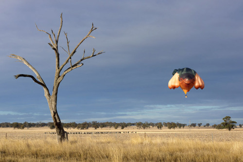 The sky whale hot-air balloon (by Patricia Piccinini) Via