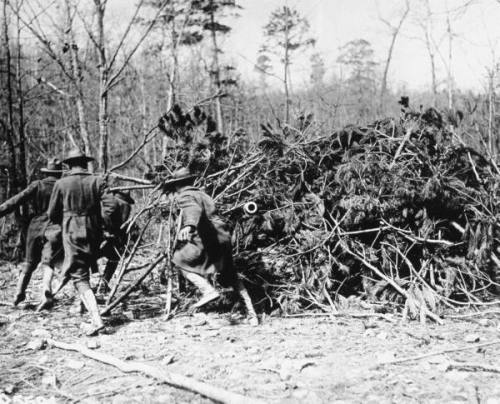 American soldiers practicing with camouflaged artillery upon their arrival to France, 1917