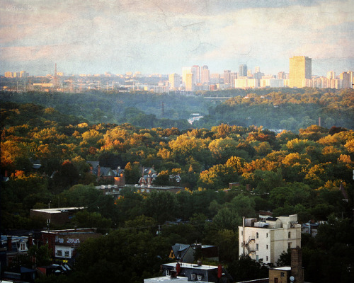 Toronto's Tales of Dales. Golden Sunset Touch by Katrin Ray on Flickr.