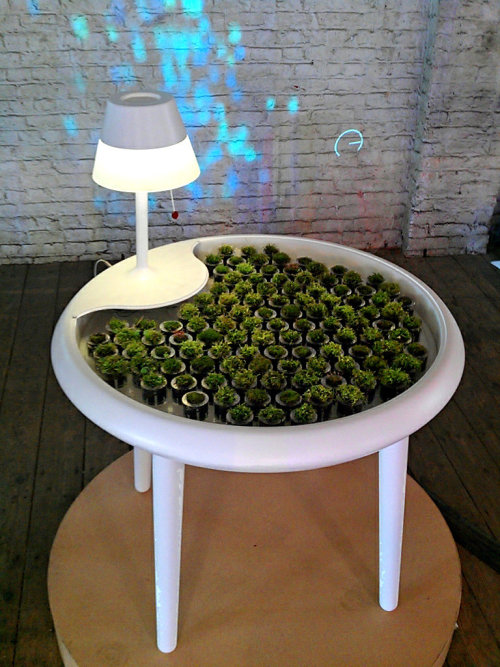 "A moss-covered table that harnesses electricity from photosynthesis to power small electronics (called ""photovoltaics"") and a fiber-optic chandelier that shines through petri dishes of customizable bacterial cultures from this awesome New York Times article on science and design in the home. Don't miss the slideshow."
