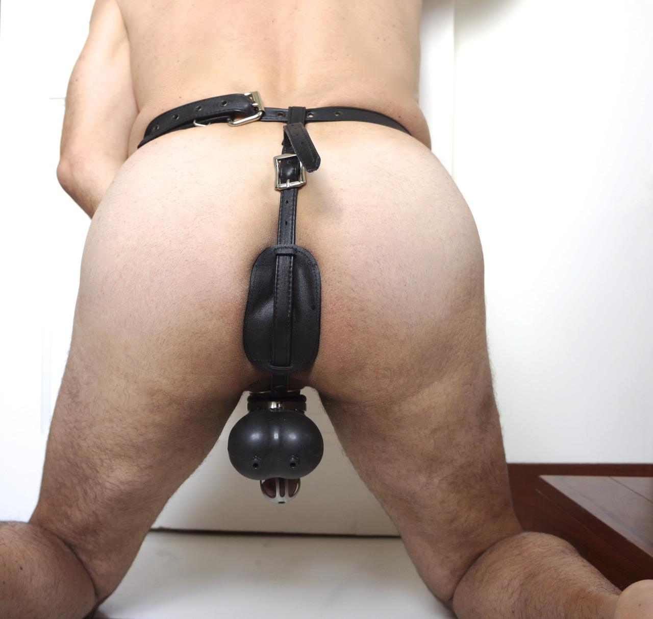 Locking butt plug girls