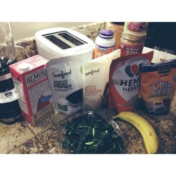 The #superfood  arsenal that goes into my green smoothies: Kale, banana, almond milk, cacao powder, maca powder, hemp hearts, chia seeds, raw almond butter, coconut butter, spirulina powder, cinnamon & ice. All #raw all organic, all amazing for the body & mind! Sometimes prepackaged powders taste funky, so I've nailed down a good blend to my liking here 😻 get your green smoothie on people! #vegan