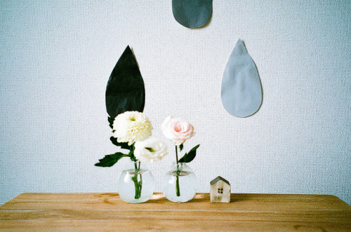 aerovu:  untitled by bamsesayaka on Flickr.
