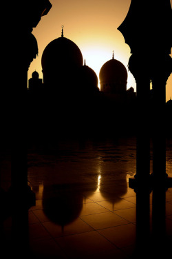 forestirom:  Sheikh Zayed Grand Mosque at Sunset (2) - Abu Dhabi, UAE by M. Khatib on Flickr.