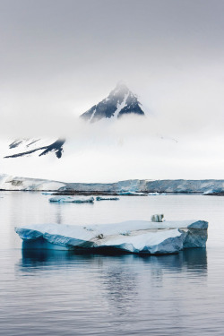 archenland:  Neumayer Channel, Antarctica by Richard Williams