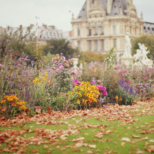 allthingseurope:  Tuileries, Paris (by liz.rusby)
