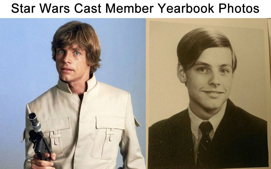 tumblr ofktpmhM581sknyuxo1 1280 graceebooks: wwinterweb: Star Wars cast member yearbook photos...