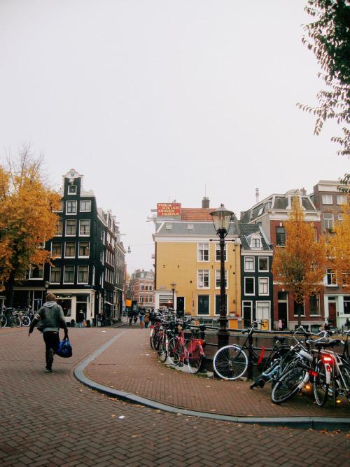 oceauxn:  AMSTERDAM