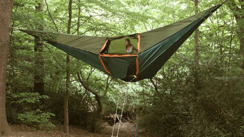 pizzaforpresident:  I wanta hammock tent