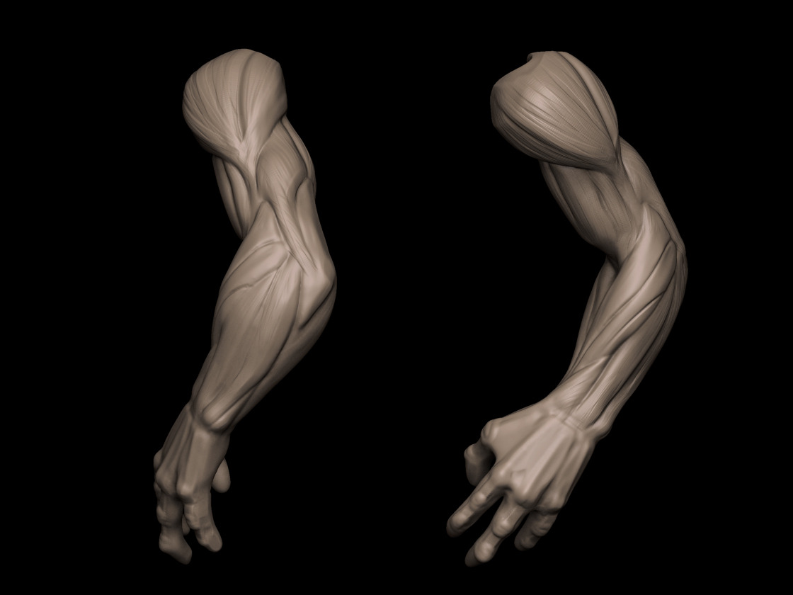 Creature arm study 2 hrs. Gonna make this to an custom insert brush. That elbow looks ridiculous and so does that wrist. Gotta review my plane breaks and hands and stop being lazy