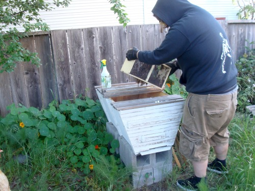 Super High Tech Max Capacity Beekeeping Gear