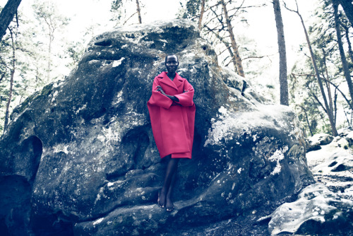 timeless-couture:  Grace Bol photographed by Markus Jans for Tush Magazine Summer 2012  A COUTURE MOMENT