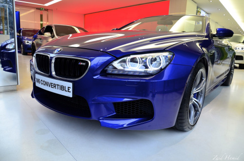 The scimitar Starring: BMW M6 (by ImZaidHamid)