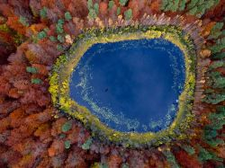 scienceisbeauty:  Fall colors blaze out in concentric rings from a lake in eastern Pomerania, Poland. The region on the south shore of the Baltic Sea is largely covered with farmland and vast swaths of forest. Source ((Travel 365, National Geographic)