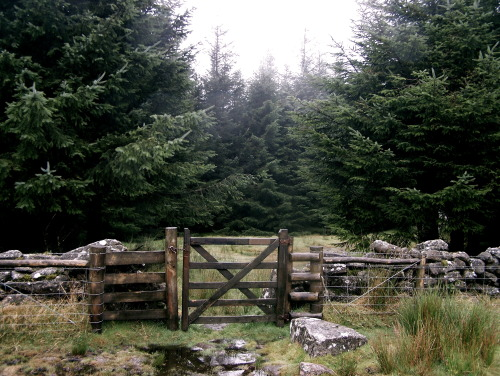 wolfgang-alaska:  Dartmoor gateways. ( by wolfgang-alaska )