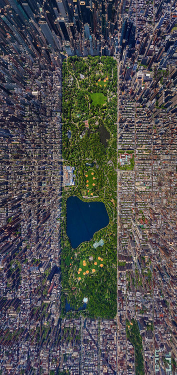 in-sideofclouds:  kweezy157:  striveforperfectionnn:   New York City's Central Park from Above  oh damn  looks like GTA  wow