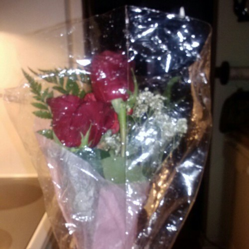 "My ""I'm sorry"" roses . I have an amazing boyfriend <3"