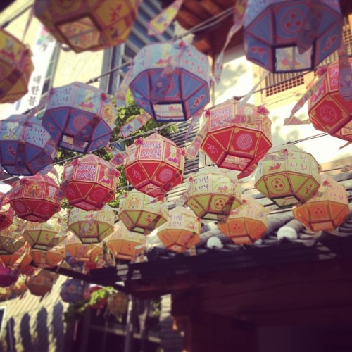 estelio:  Lanterns in Buddha's Birthday.