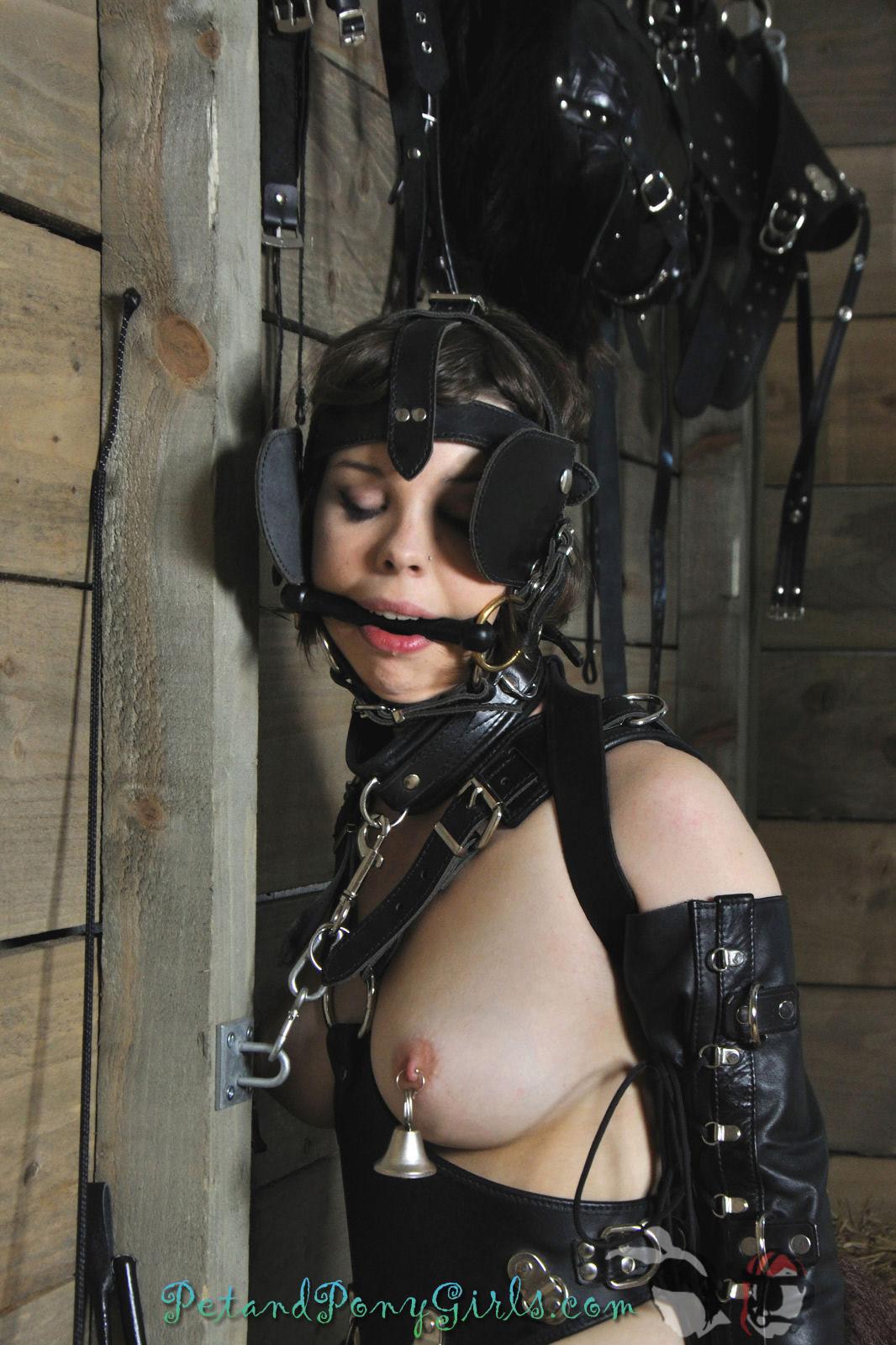 uglt girl porn galleries free mmf handjob clips porchain bondag