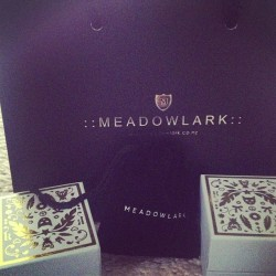Too much happiness #birthdaypresents #karenwalker #meadowlark