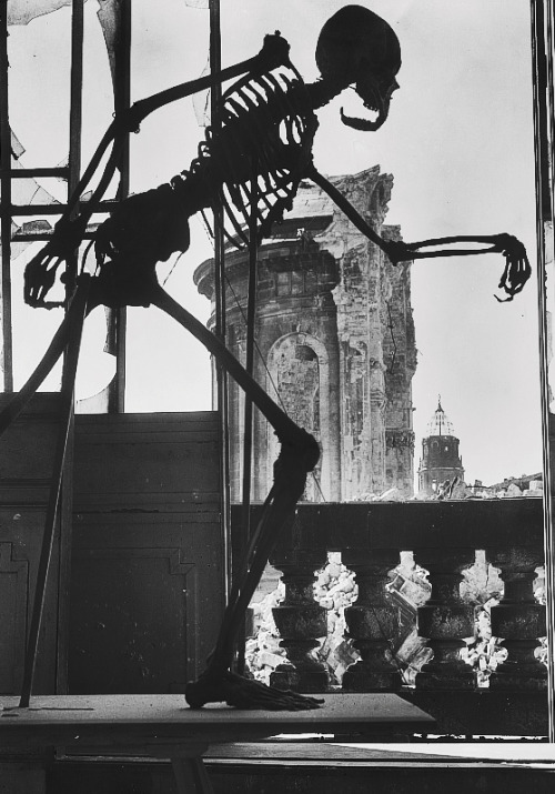 A class skeleton stands damaged in the bombed ruins of Dresden. Photographed by Richard Peter, 1945