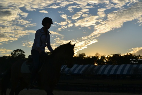 ©Tiana.Chapman Photography HITS Ocala