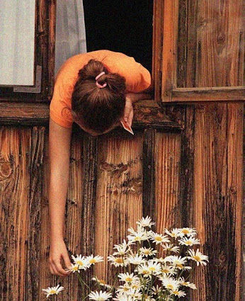 Doors & Windows in our Life ❤ – Społeczność – Google+