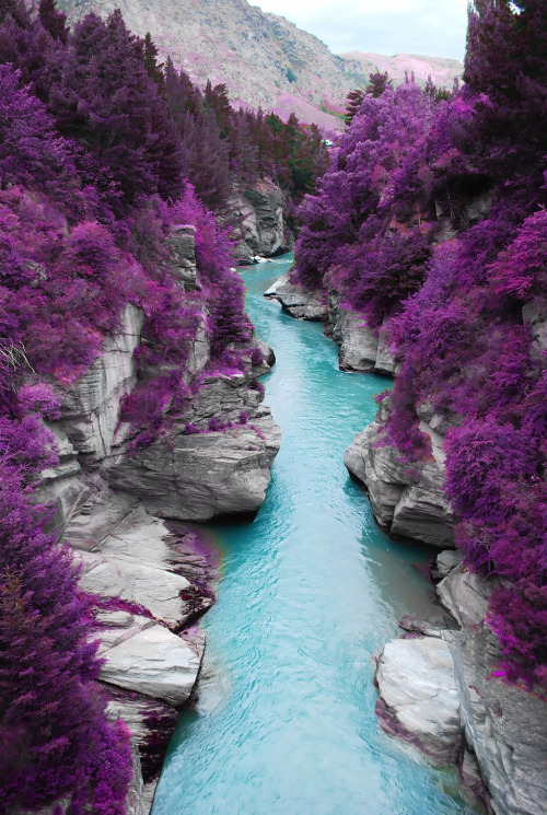 liamdryden:  recykle:   Fairy Pools on the Isle of Skye, Scotland Is Scotland a different planet or something?  oh my this is beyond beautiful  hahaha guuuuyys come on what the hell kind of fir trees do you know of that grow purple also it's not even a pool! or in Scotland!!!  Here's an actual fairy pool at Glen Brittle; it's equally as gorgeous without having to look like the Alexandria's Genesis of nature