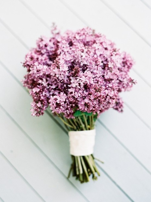 livin-on-lovee:  lilac bouquet | blu magnolia | photo by jenhuangblog.com  Yes please! Oh that would smell heavenly :)