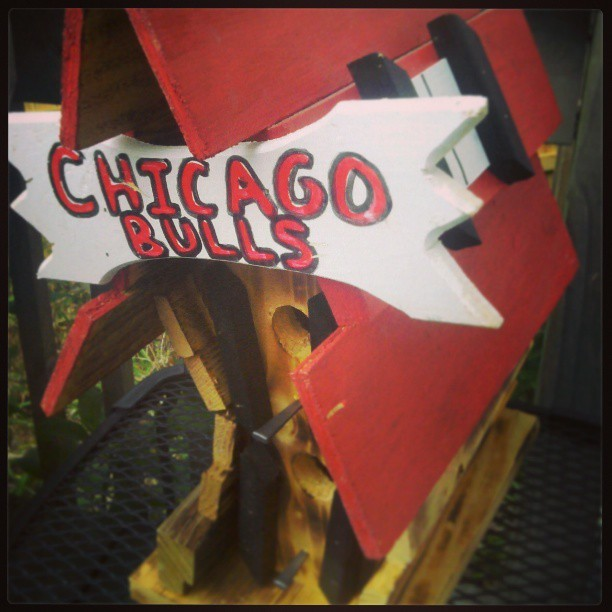 #Birdhouse #Original #Unique #Chicago #Bulls #ChicagoBulls #Chitown #Photography