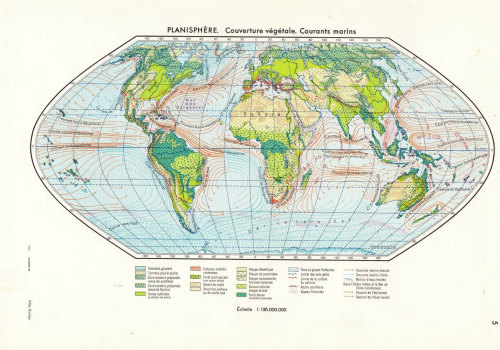 Vintage  World Map Vegetation, Ocean Currents 1950s at CarambasVintage http://etsy.me/WQLcn5