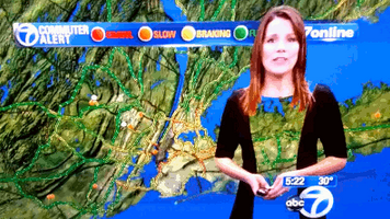 News Reporter Did Not Wear the Right Green Screen Dress [Click to animate]