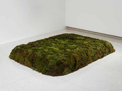 mitjaissick:  Meg Webster Moss bed, Queen 1986/ 2005 20 cubic yards of peat moss formed to a queen size bed