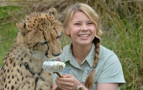 bindi irwin (steve irwin's daughter), 2013