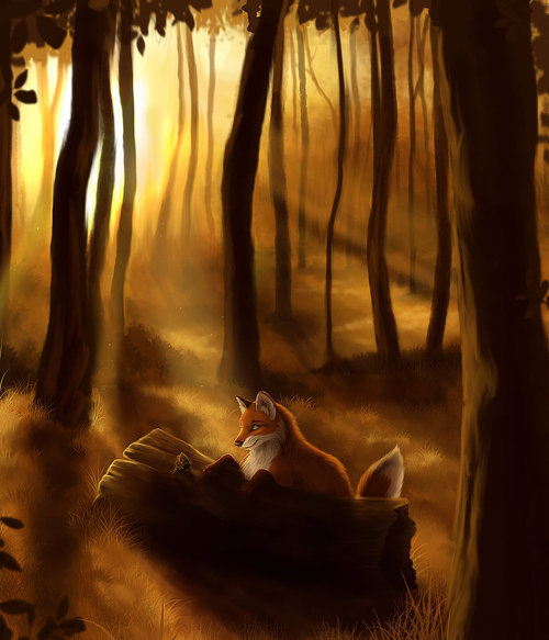 Fox by ~WingsofaButterfly202