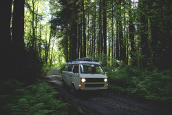 van-life:  Model: Volkswagen Vanagon Westfalia 1983 Location: Humbolt County, California  Photo: Donnie Hedden via www.ourcurrentsea.com