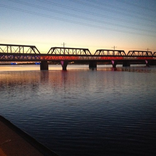 Here's to spending more time at the lake! #tempe #townlake #arborday #5k (at Tempe Beach Park)