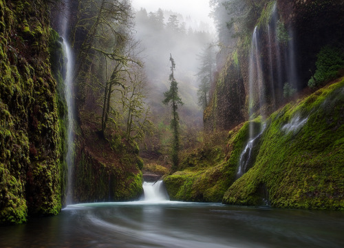 ecocides:  Columbia River Gorge, Oregon | image by Miles Morgan