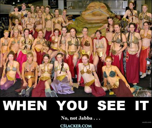 Can't see Leia because of all the Leia's there http://www.jedipedia.net/wiki/Leia