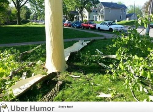 Lightning last night blew the bark off this treehttp://meme-rage.tumblr.com