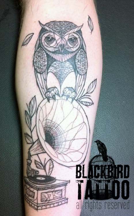 blackbirdinkhouse:  owl on gramophone