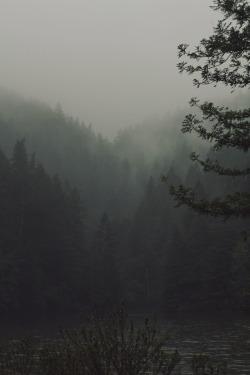 lake rain original hiking fog waterfalls hike Redwoods trekking original photography photographers on tumblr narure