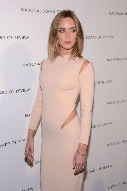 2013 National Board Of Review Awards Gala at Cipriani 42nd Street in New York - Jan. 8,2013