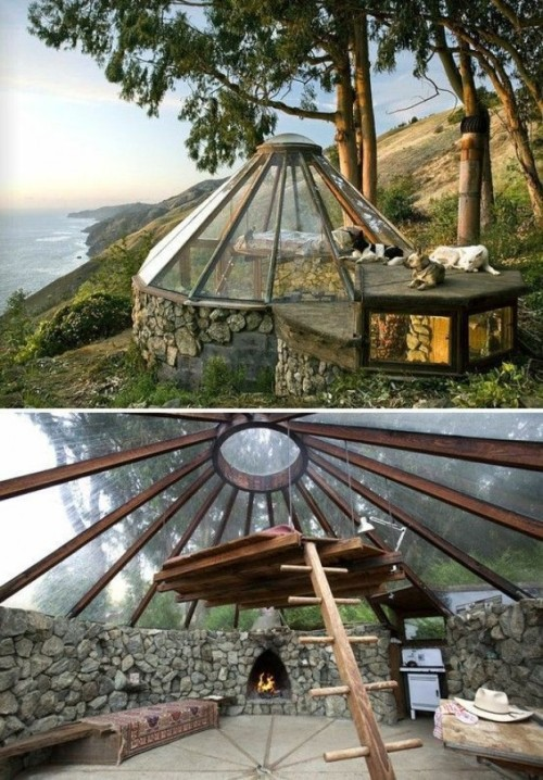 designocalm:  Into the wild   This is actually pretty close to my dream house. Okay, it needs more bookcases. But then it's my dream house.
